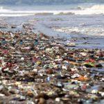 Ekspedisi Bakti Nusa Hadir di Sorong,Temukan Sampah Plastik Mulai Menggunung