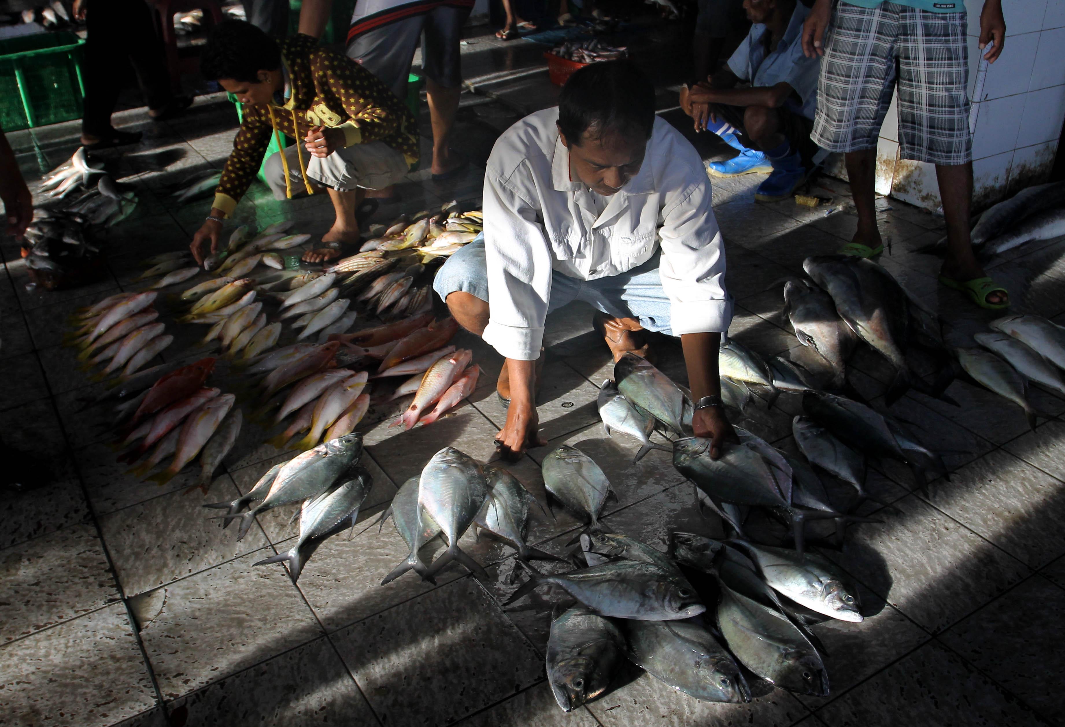 Menteri Susi Klaim Sektor Perikanan Alami Peningkatan, KIARA sebut Sebaliknya