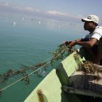 Kriminalisasi Nelayan Pulau Pari, Bukti Pemerintah lebih Pentingkan Korporasi
