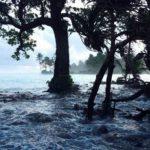 Atasi Perubahan Iklim, Kemenko Maritim dan BPPT Lakukan Langkah Antisipasi