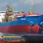 MV Iriana, Kapal Bertenaga Listrik Pertama buatan Dalam Negeri