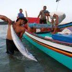 Perjalanan Visi Poros Maritim, KNTI: Nasib Nelayan belum Membaik