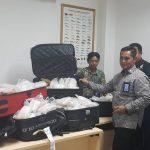 Diamankan, Ribuan Benih Lobster Selundupan di Bandara Lampung