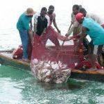 Front Nelayan Indonesia sebut Alat Tangkap Gill Net makin Sulitkan Nelayan