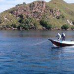 Kerusakan Lingkungan Hantui Keindahan Wisata Laut Labuan Bajo