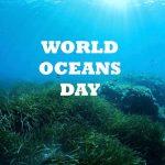 World Oceans Day 2017, saatnya Mengevaluasi Kebijakan Kelautan Pemerintahan Poros Maritim
