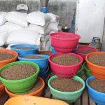 Targetkan Bantuan 40 Ton, BBPBAP Jepara Siap Bersaing di Pasar