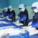 KNTI: Industrialisasi Perikanan masih belum tersentuh dalam RKP 2018