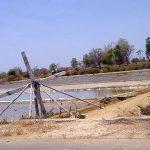 Atasi Krisis Garam, Perkuat Infrastruktur Produksi Garam Nasional