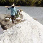 Selamatkan Petambak Garam Nasional, KIARA: Mafia Impor Garam harus Diberantas