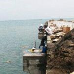 Proyek Pelabuhan Patimban terbentur Dana Pembebasan Lahan