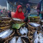 KIARA: Pahlawan Pangan itu Bernama Perempuan Nelayan
