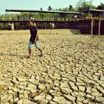 Puncak Musim Kemarau Akibatkan Pulau Jawa dan Nusa Tenggara Dilanda Kekeringan