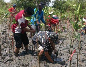 Lanal Batuporon bersama unsur masyarakat tanam mangrove.