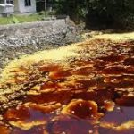 KIARA Minta Sanksi Tegas buat Perusahaan terkait Pencemaran Minyak Sawit di Teluk Bayur