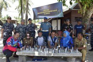Transplantasi bibit terumbu karang di perairan sekitar area wisata pulau Pahawang, Pesawaran, Lampung.