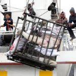 Peringati Hari Migran Dunia, KNTI Serukan Ratifikasi Konvensi ILO 188 tahun 2007