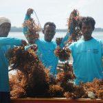 DFW Indonesia Minta Pemerintah Lebih Aktif membangun Ekonomi Desa Pesisir