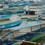 Hampir Sebagian Besar Hasil Tangkapan Ikan Nelayan Cilacap Diekspor