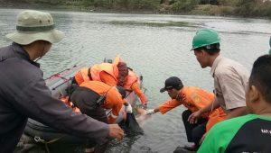 Ilustrasi evakuasi korban tenggelam.